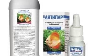 Антипар для рыбок: инструкция по правильному применению в общем аквариуме, побочные действия