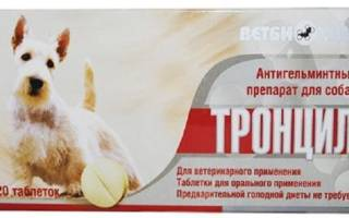 Тронцил для собак: инструкция по применению для собак, побочные эффекты и противопоказания