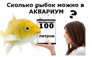 Сколько и каких рыб можно держать в аквариумах емкости 20, 50 и 100 литров,