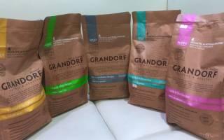 Грандорф для собак: состав корма холистик, плюсы и минусы