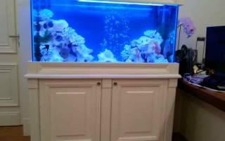 Тумба под аквариум своими руками: пошаговая инструкция изготовления подставки