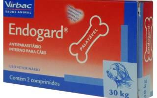 Эндогард: инструкция по применению для собак, дозировка и побочные действия, цена и аналоги