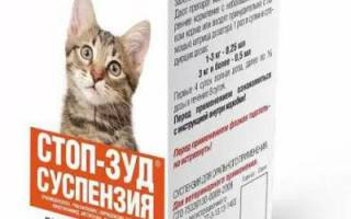 Стоп зуд для кошек и собак: инструкция по применению суспензии