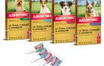 Капли от блох для собак адвантикс: инструкция по применению, цена и аналоги
