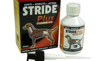 Страйд плюс для собак: инструкция по применению, дозировка и побочные действия, цена и аналоги