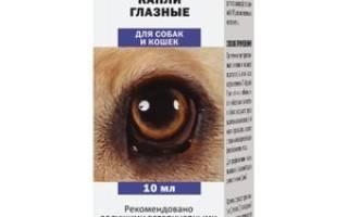 Глазные капли ципровет: инструкция по применению для кошек и собак