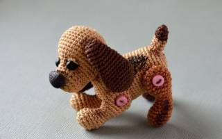 15 игрушек для собак своими руками: как сделать в домашних условиях