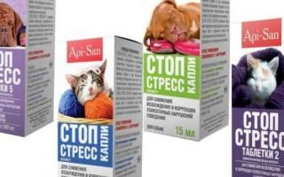 Стоп стресс для кошек и собак: инструкция по применению капель, противопоказания и побочные действия