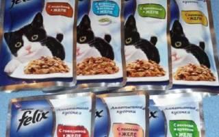 Кошачий корм Феликс: описание и состав, сравнение с другими видами кошачьей еды, цена и отзывы